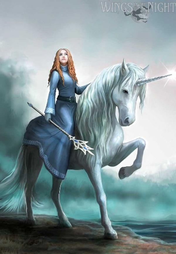 Anne Stokes Journey's Start Unicorn Greeting Card